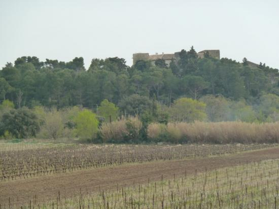chateau vue de garigue